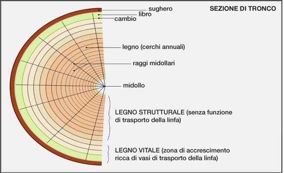 fig70.jpg