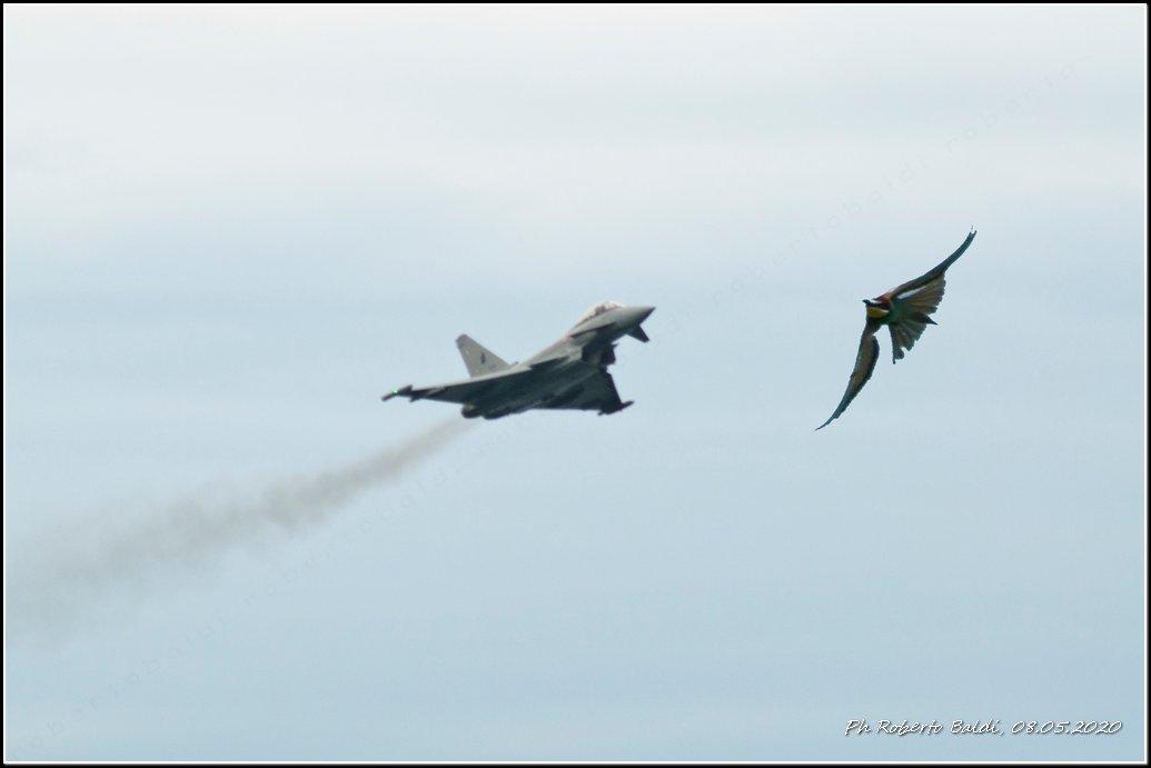DSC_5066r_Eurofighter.jpg