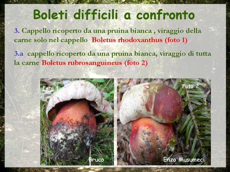 Difficili_a_confronto_6.jpg