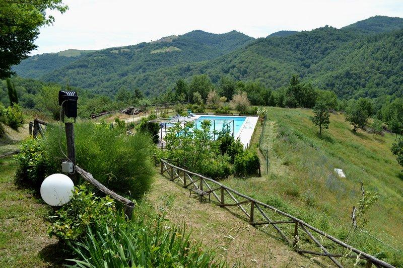 la piscina con lo sfondo dei castagneti di Gerosa.jpg