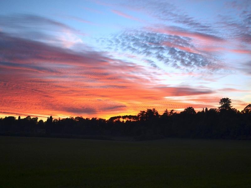 z tramonto  Selva Bandini 16-11-2016 1.jpg