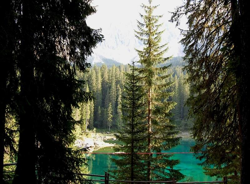 lago_di_Carezza_15.jpg