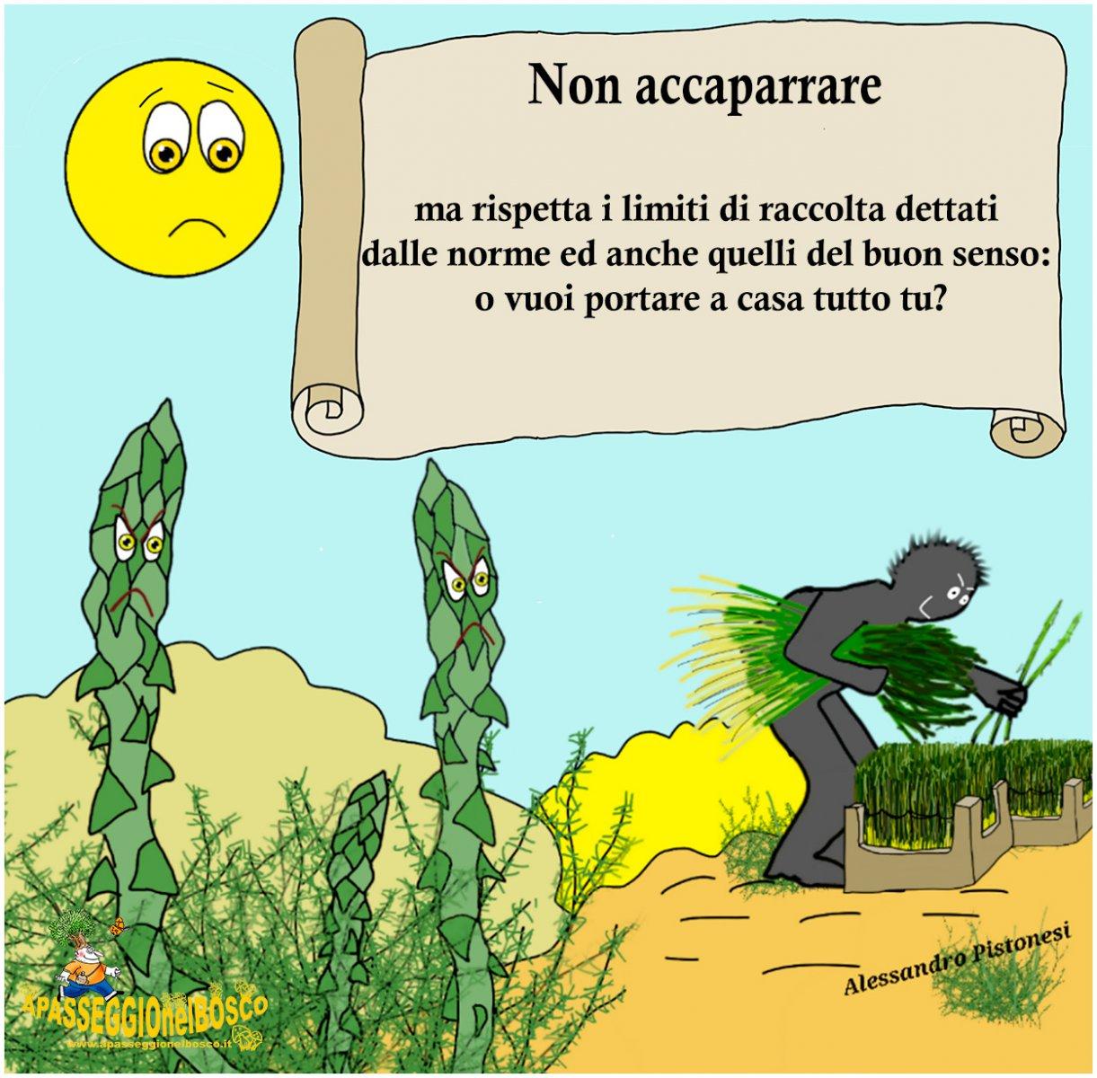 ECCESSO-DI-RACCOLTA1.jpg